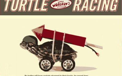 LW_turtle_racing.1.1.1